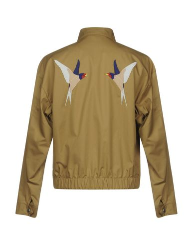 Stella Mccartney Swallow AppliquÉ Cotton Harrington Jacket, Brown