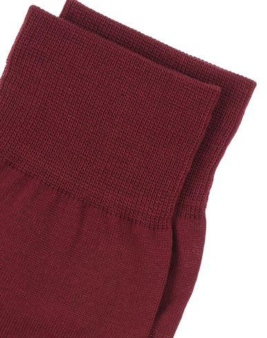 DSQUARED2 Calcetines cortos