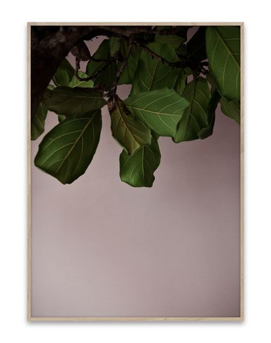PAPER COLLECTIVE - Wall Decor